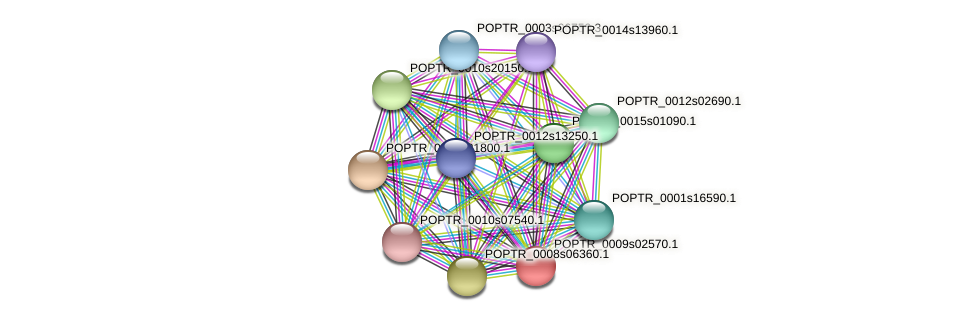 POPTR_0009s02570.1 protein (Populus trichocarpa) - STRING interaction network