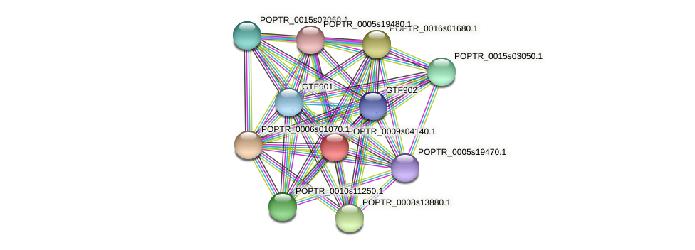 POPTR_0009s04140.1 protein (Populus trichocarpa) - STRING interaction network