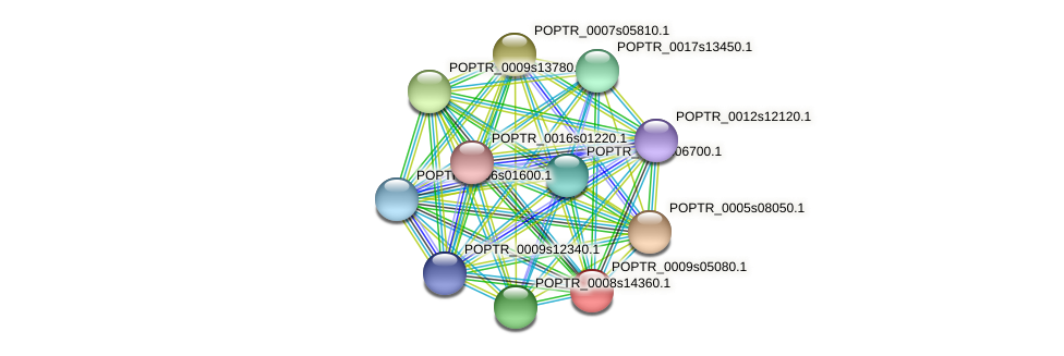 POPTR_0009s05080.1 protein (Populus trichocarpa) - STRING interaction network