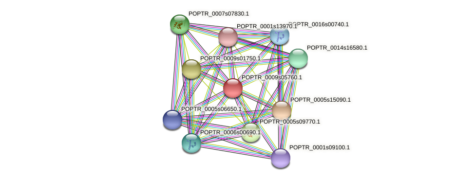 POPTR_0009s05760.1 protein (Populus trichocarpa) - STRING interaction network