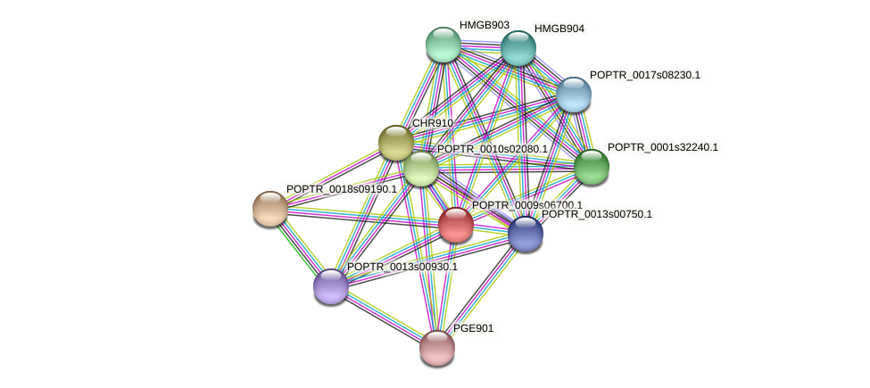 POPTR_0009s06700.1 protein (Populus trichocarpa) - STRING interaction network