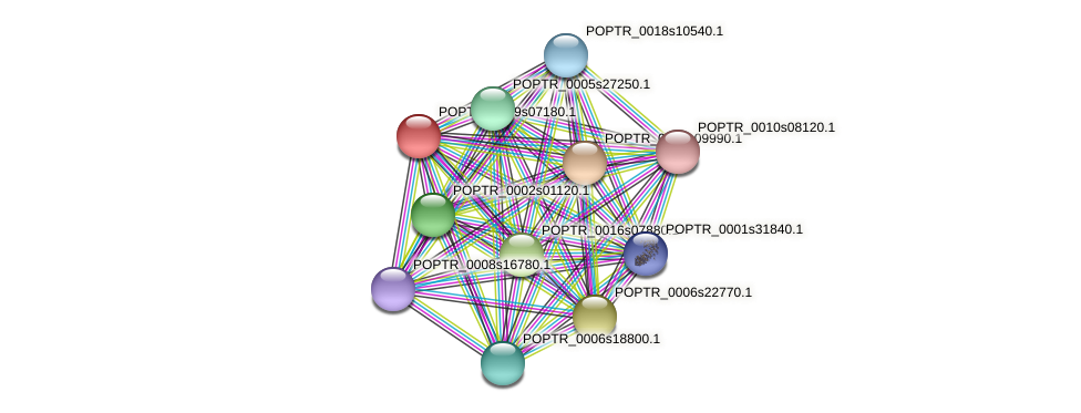 POPTR_0009s07180.1 protein (Populus trichocarpa) - STRING interaction network