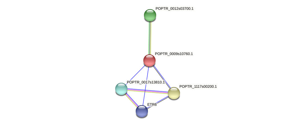 POPTR_0009s10760.1 protein (Populus trichocarpa) - STRING interaction network