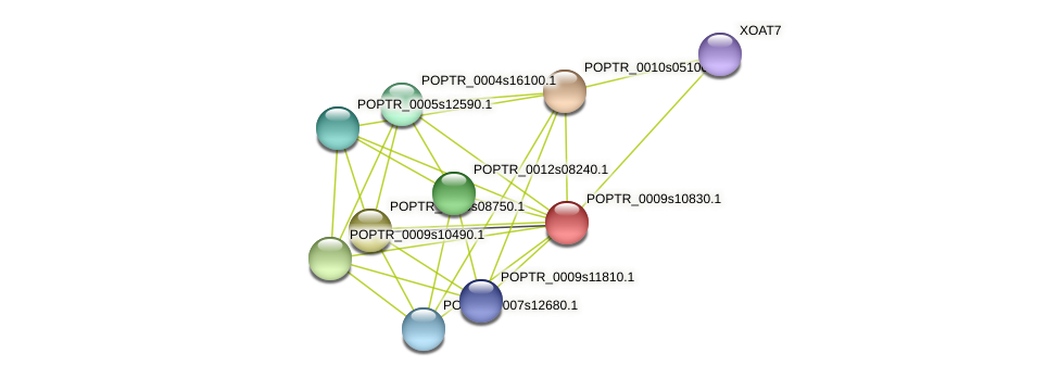 POPTR_0009s10830.1 protein (Populus trichocarpa) - STRING interaction network
