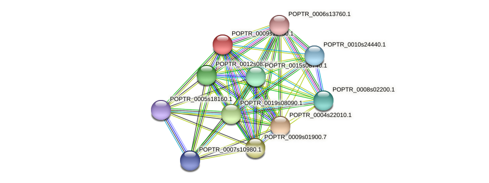 POPTR_0009s11480.1 protein (Populus trichocarpa) - STRING interaction network