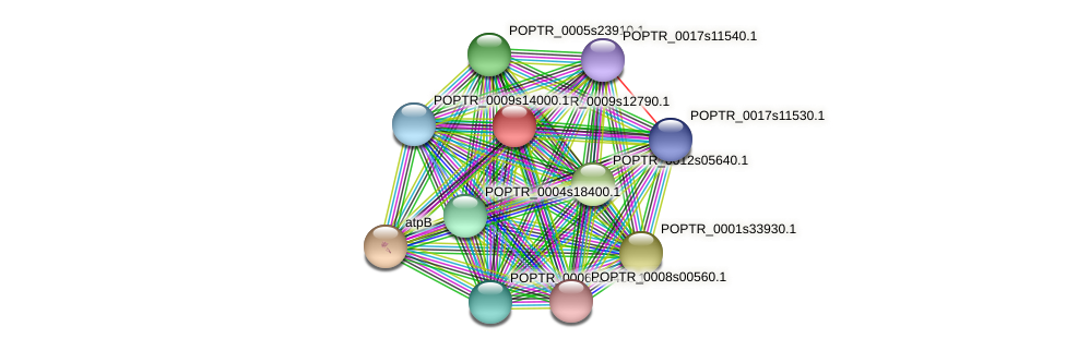 POPTR_0009s12790.1 protein (Populus trichocarpa) - STRING interaction network