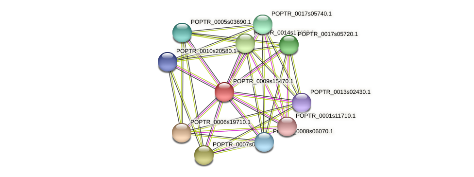POPTR_0009s15470.1 protein (Populus trichocarpa) - STRING interaction network