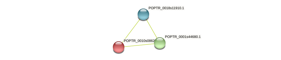 POPTR_0010s08620.1 protein (Populus trichocarpa) - STRING interaction network