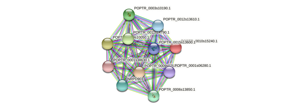 POPTR_0010s15240.1 protein (Populus trichocarpa) - STRING interaction network