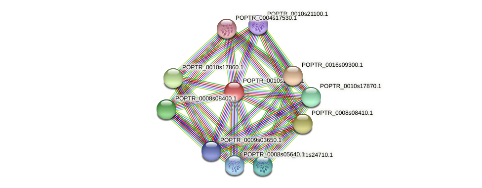 POPTR_0010s17930.1 protein (Populus trichocarpa) - STRING interaction network