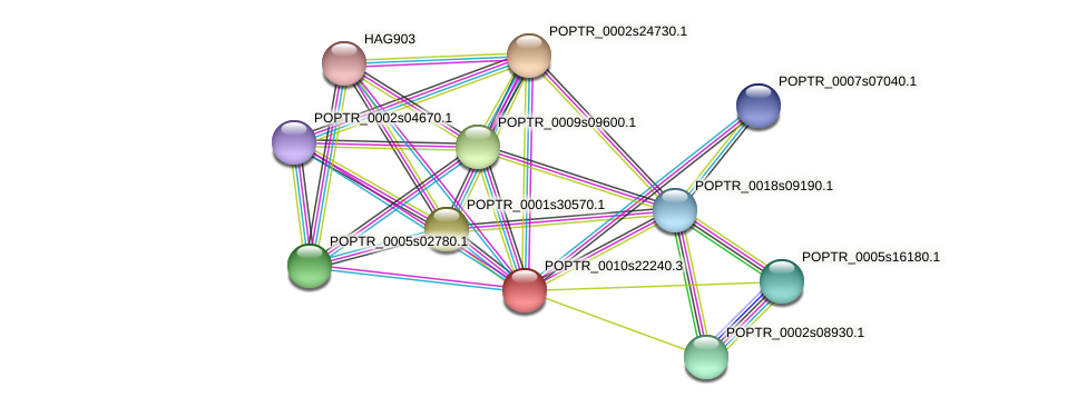 POPTR_0010s22240.1 protein (Populus trichocarpa) - STRING interaction network