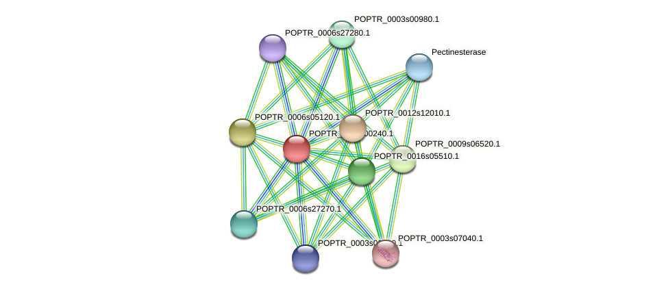 POPTR_0011s00240.1 protein (Populus trichocarpa) - STRING interaction network