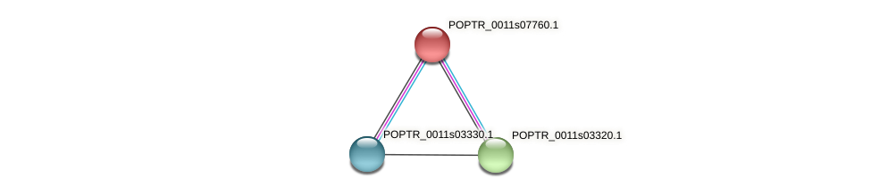 POPTR_0011s07760.1 protein (Populus trichocarpa) - STRING interaction network