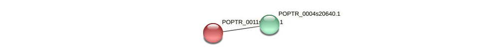 POPTR_0011s11610.1 protein (Populus trichocarpa) - STRING interaction network
