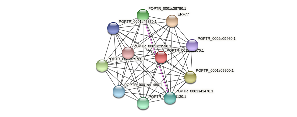 POPTR_0011s11870.1 protein (Populus trichocarpa) - STRING interaction network