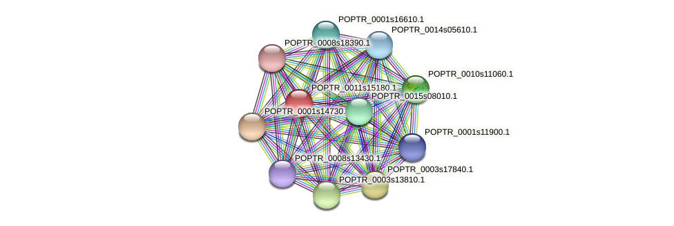 POPTR_0011s15180.1 protein (Populus trichocarpa) - STRING interaction network