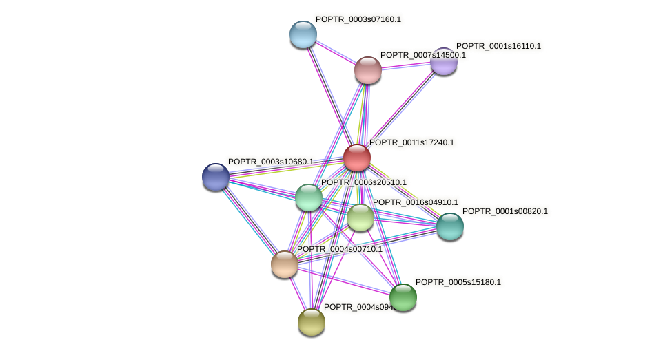 POPTR_0011s17240.1 protein (Populus trichocarpa) - STRING interaction network