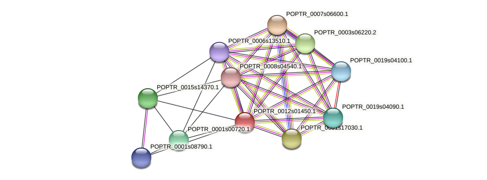 POPTR_0012s01450.1 protein (Populus trichocarpa) - STRING interaction network