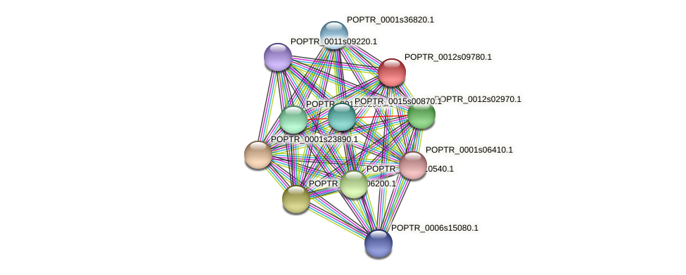 POPTR_0012s09780.1 protein (Populus trichocarpa) - STRING interaction network
