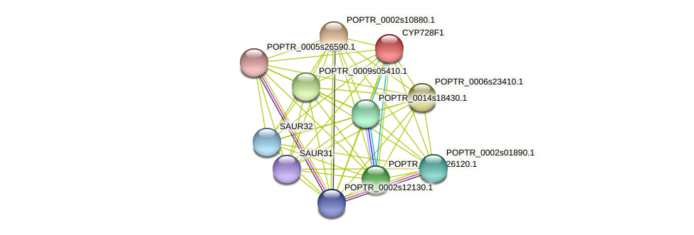 POPTR_0012s11470.1 protein (Populus trichocarpa) - STRING interaction network