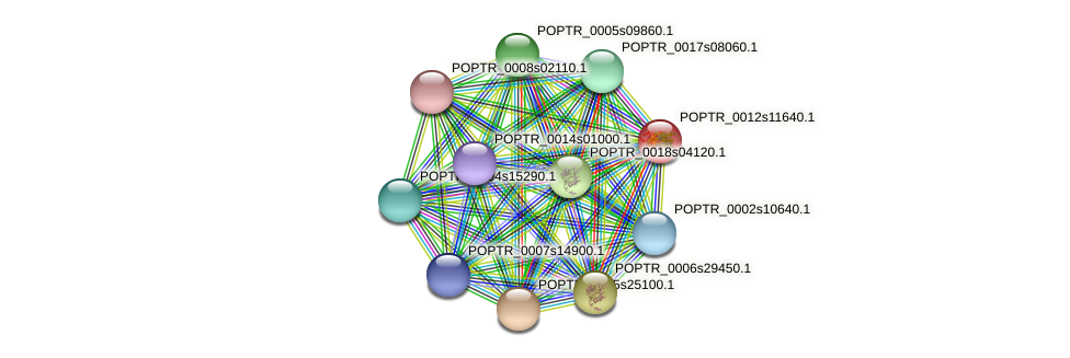 POPTR_0012s11640.1 protein (Populus trichocarpa) - STRING interaction network
