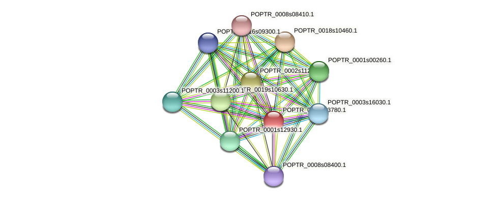 POPTR_0012s13780.1 protein (Populus trichocarpa) - STRING interaction network
