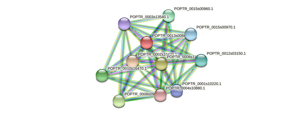 POPTR_0013s00660.1 protein (Populus trichocarpa) - STRING interaction network