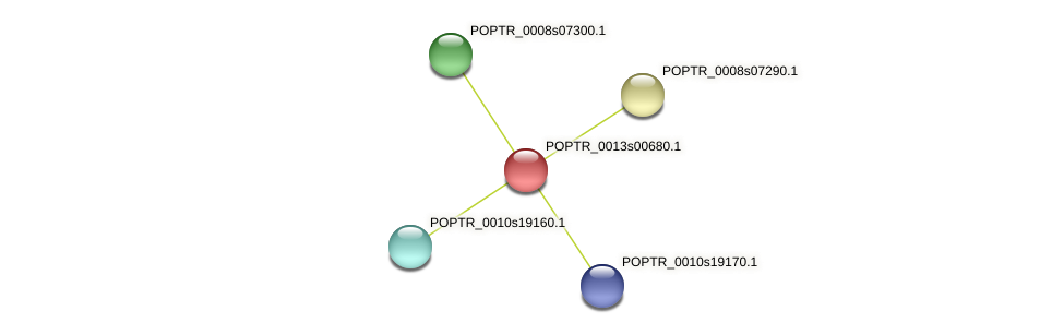 POPTR_0013s00680.1 protein (Populus trichocarpa) - STRING interaction network