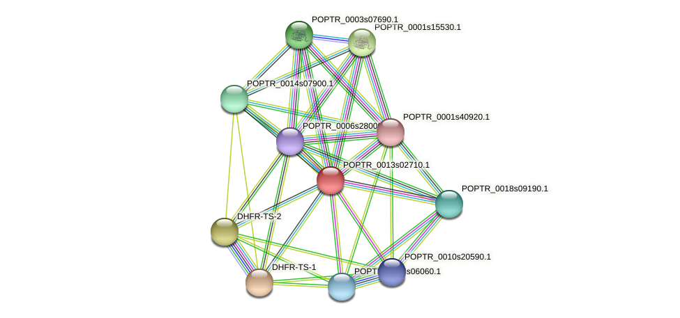 POPTR_0013s02710.1 protein (Populus trichocarpa) - STRING interaction network