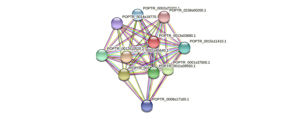 POPTR_0013s03680.1 protein (Populus trichocarpa) - STRING interaction network