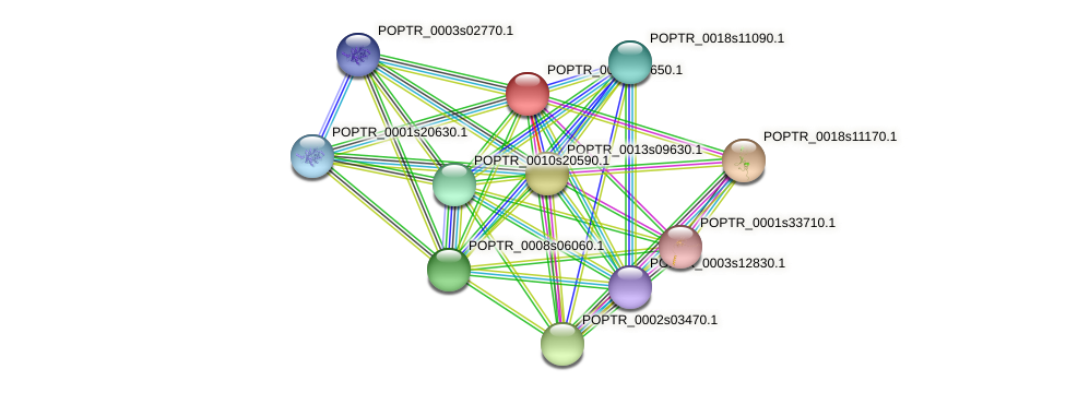 POPTR_0013s09650.1 protein (Populus trichocarpa) - STRING interaction network