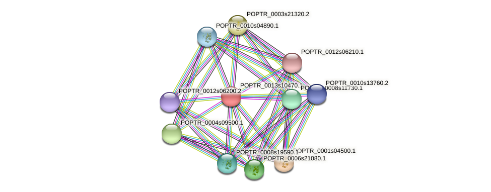 POPTR_0013s10470.1 protein (Populus trichocarpa) - STRING interaction network