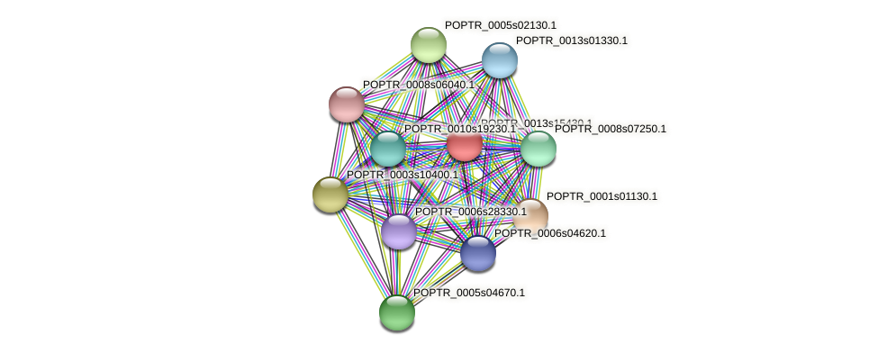 POPTR_0013s15430.1 protein (Populus trichocarpa) - STRING interaction network