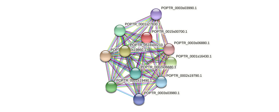 POPTR_0015s00700.1 protein (Populus trichocarpa) - STRING interaction network