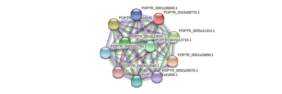 POPTR_0015s08770.1 protein (Populus trichocarpa) - STRING interaction network