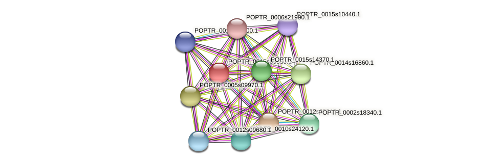 POPTR_0015s09530.1 protein (Populus trichocarpa) - STRING interaction network
