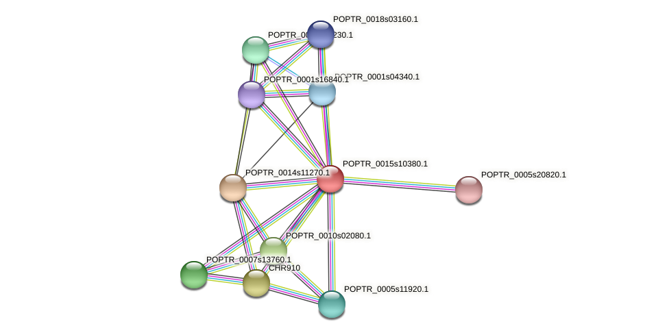 POPTR_0015s10380.1 protein (Populus trichocarpa) - STRING interaction network