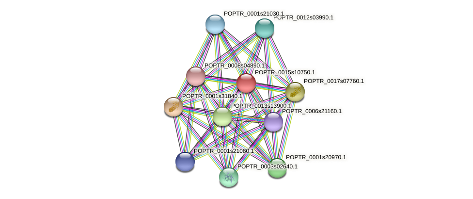 POPTR_0015s10750.1 protein (Populus trichocarpa) - STRING interaction network