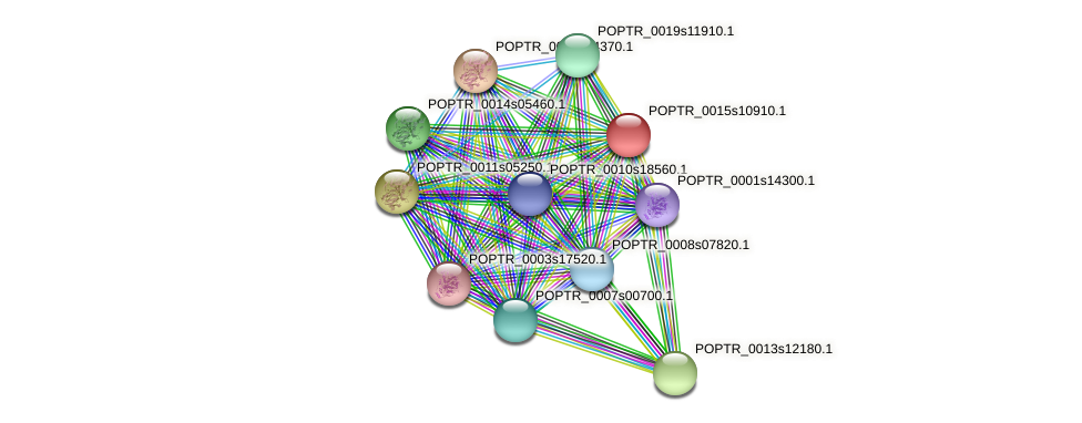 POPTR_0015s10910.1 protein (Populus trichocarpa) - STRING interaction network