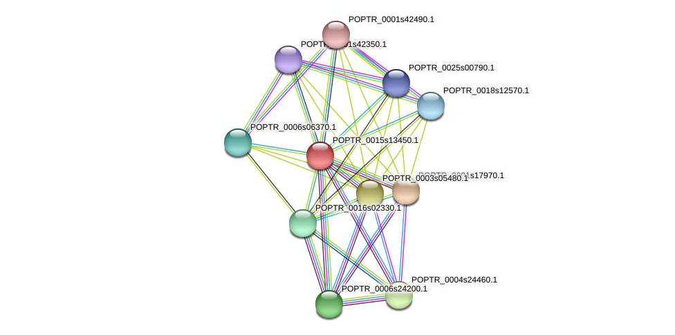 POPTR_0015s13450.1 protein (Populus trichocarpa) - STRING interaction network