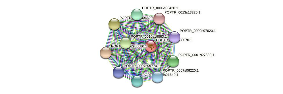 POPTR_0016s08070.1 protein (Populus trichocarpa) - STRING interaction network