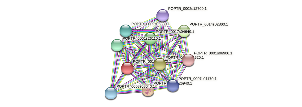 POPTR_0016s11470.1 protein (Populus trichocarpa) - STRING interaction network