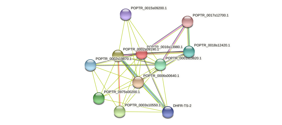 POPTR_0016s13980.1 protein (Populus trichocarpa) - STRING interaction network