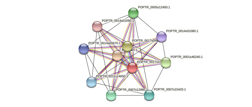 POPTR_0017s10480.1 protein (Populus trichocarpa) - STRING interaction network