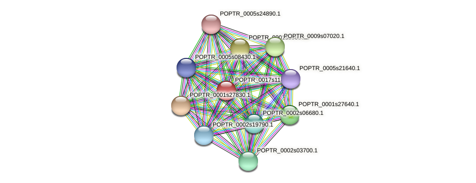 POPTR_0017s11850.1 protein (Populus trichocarpa) - STRING interaction network