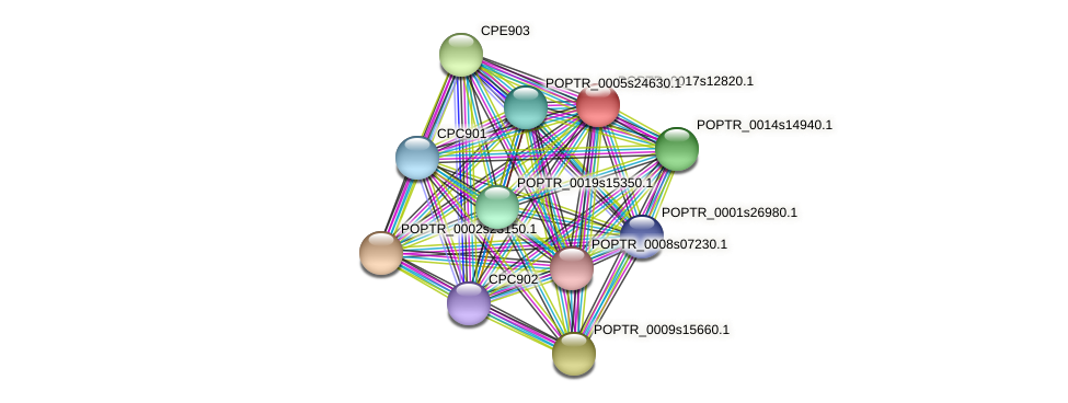 POPTR_0017s12820.1 protein (Populus trichocarpa) - STRING interaction network