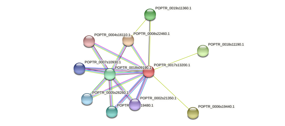 POPTR_0017s13200.1 protein (Populus trichocarpa) - STRING interaction network