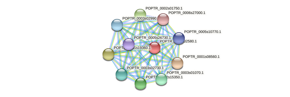 POPTR_0018s02580.1 protein (Populus trichocarpa) - STRING interaction network
