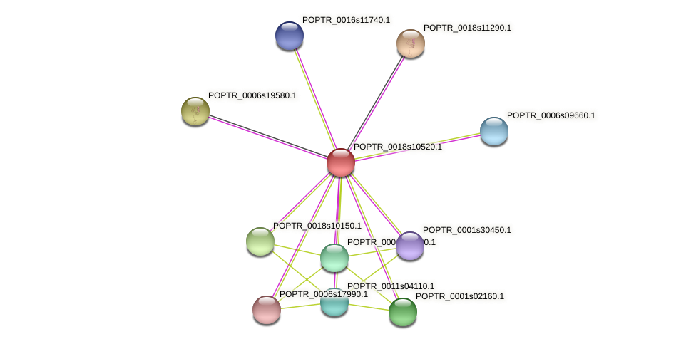POPTR_0018s10520.1 protein (Populus trichocarpa) - STRING interaction network
