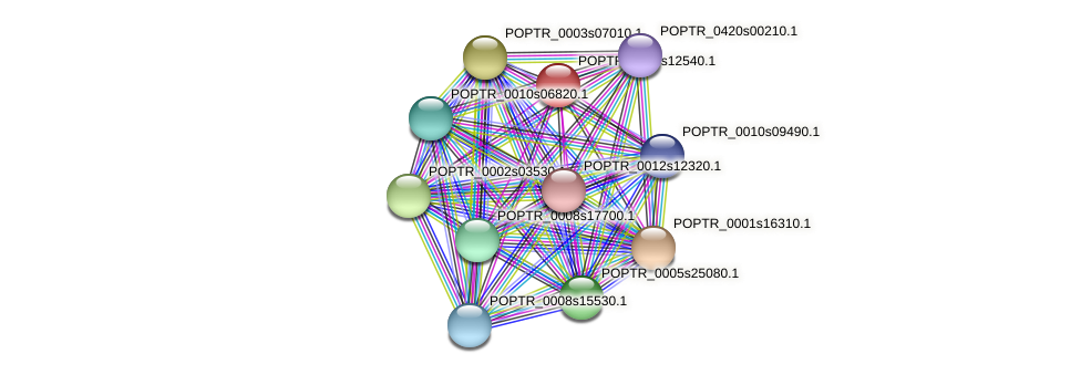 POPTR_0019s12540.1 protein (Populus trichocarpa) - STRING interaction network